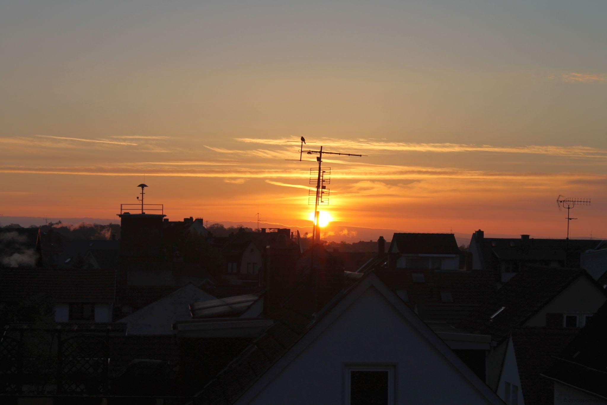 Sonnenaufgang @home