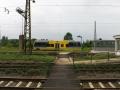 IMG_0685 (Large)